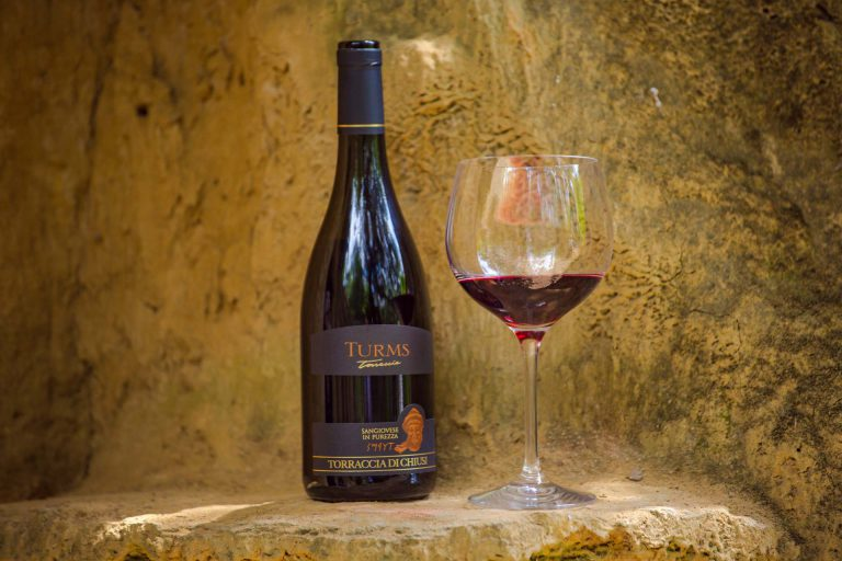 THE CELLAR AND OUR WINES - Torraccia di Chiusi